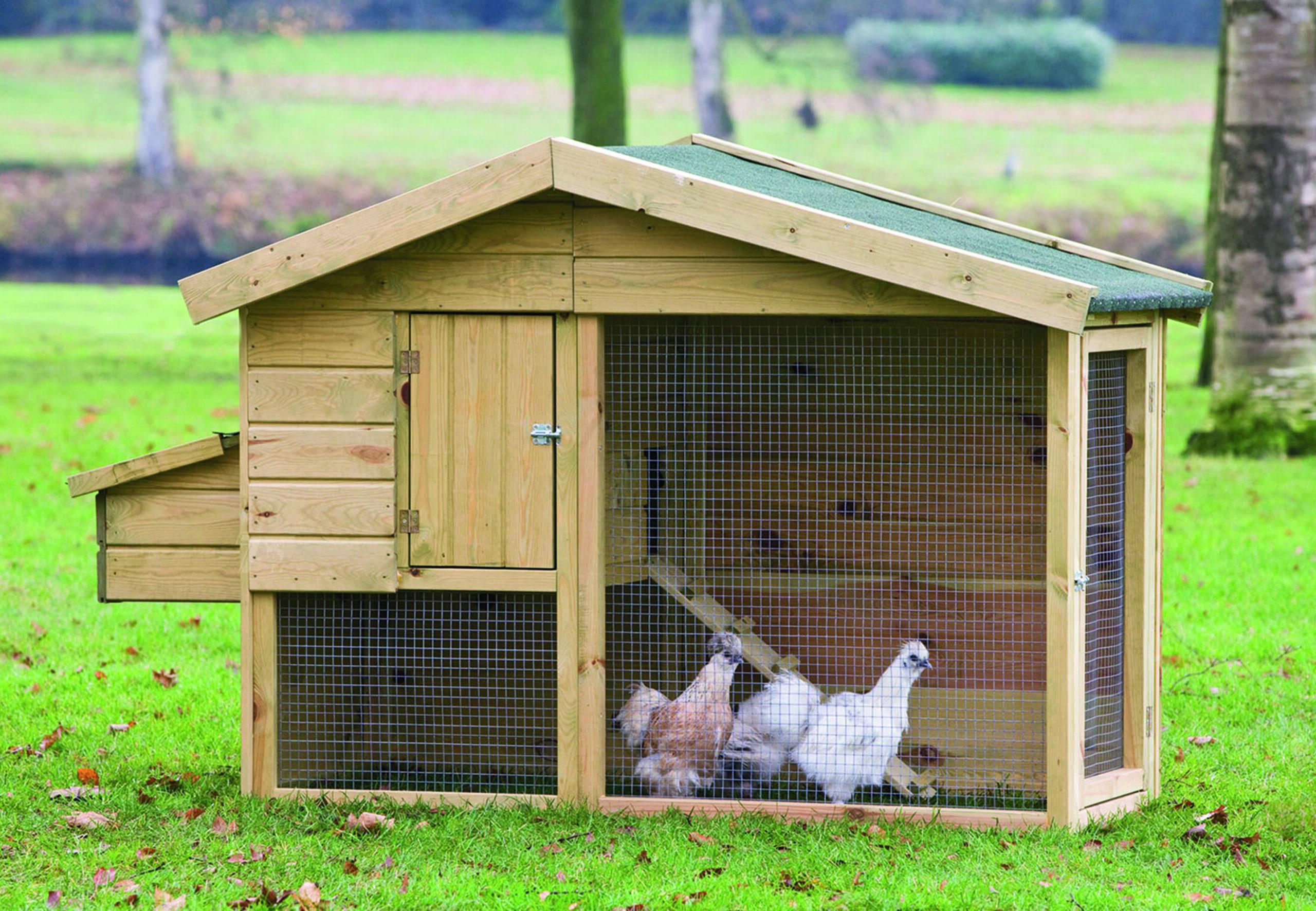 Barnevelder – Chicken Coop