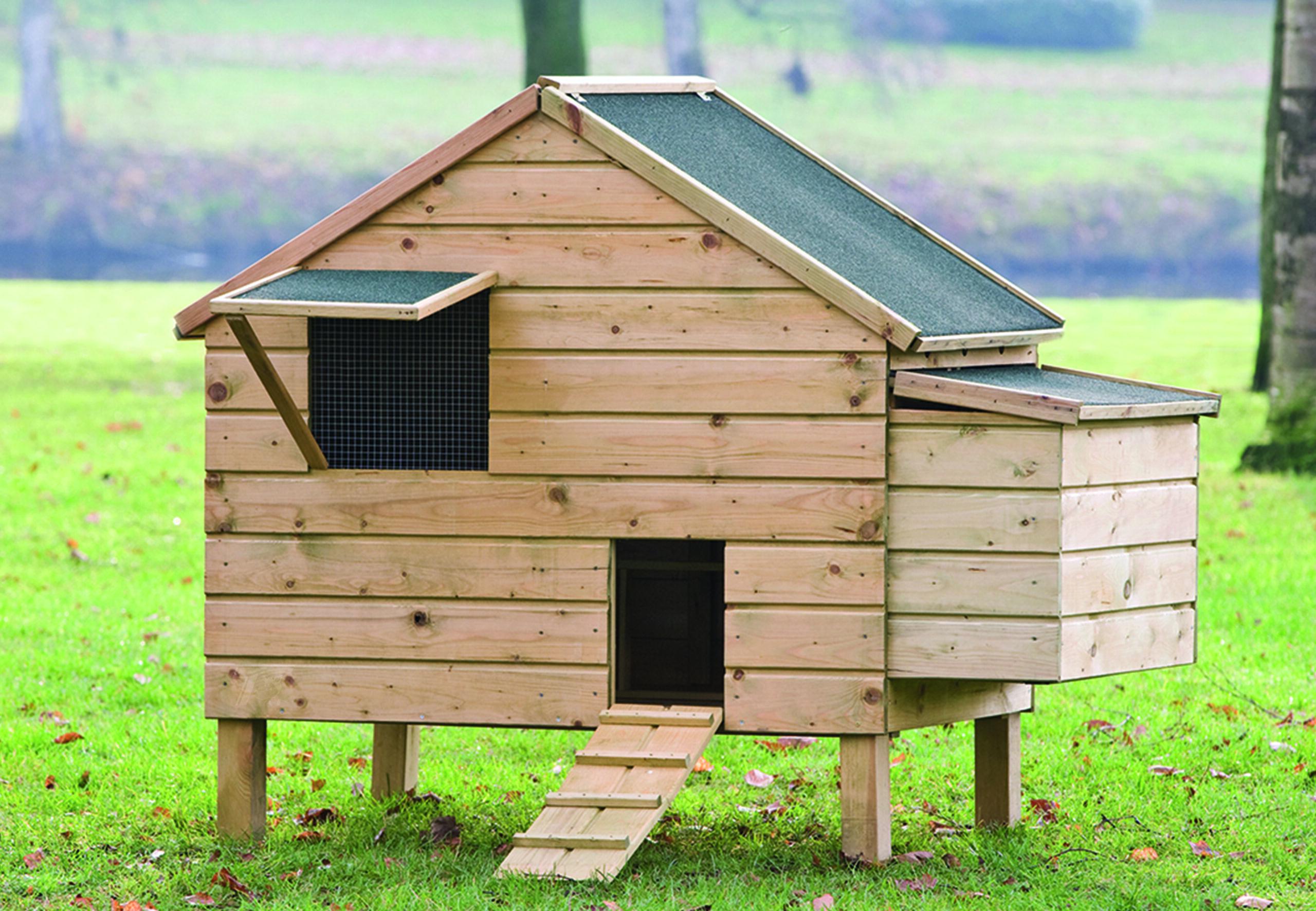 Lakenvelder – Chicken Coop