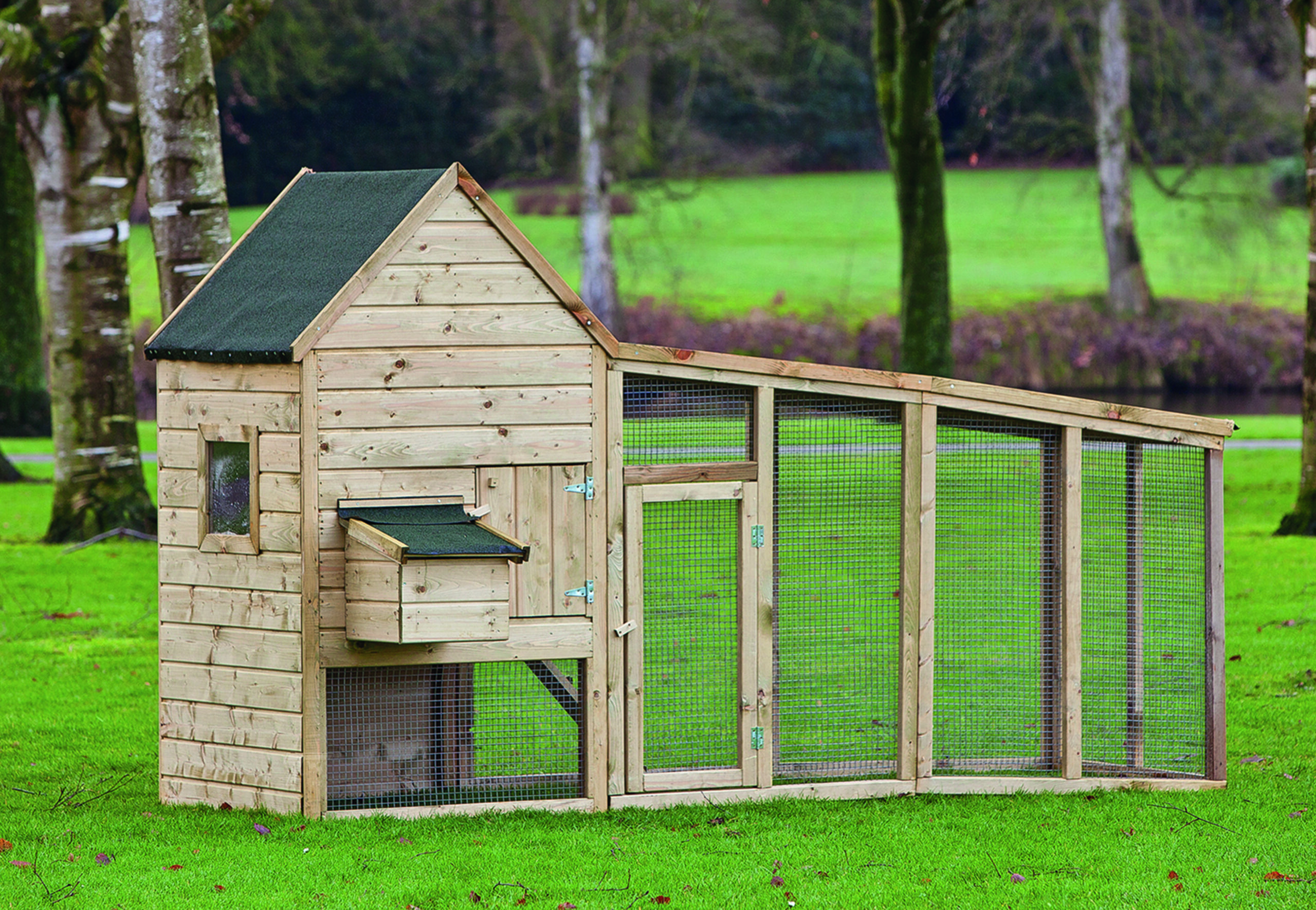 Chabo – Chicken Coop