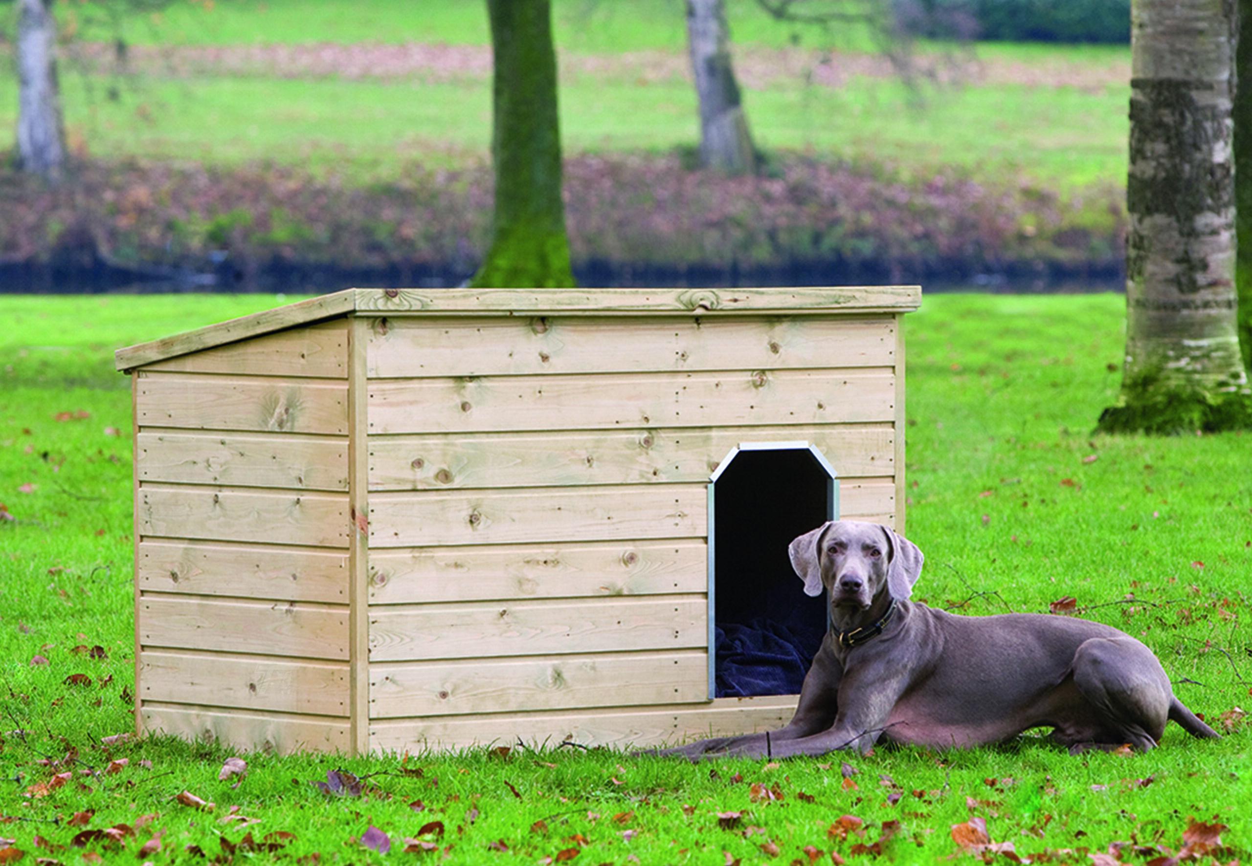 Teckel – Dog Kennel